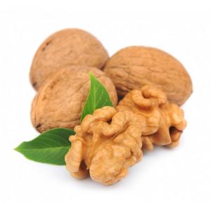 Саджанці волоського горіха, фундука, мигдалю