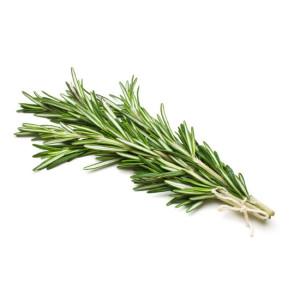 Трави, пряні трави, листя рослин
