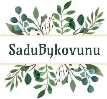 SaduBykovunu